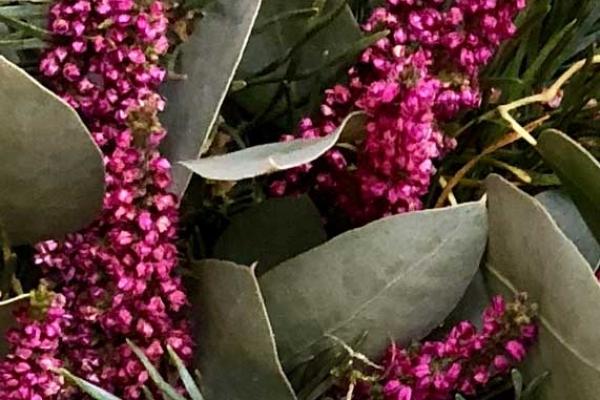 wreath-dark-beauty-332B49410-A6A6-2B74-E3C9-D278A175847E.jpg